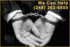 attorney-domestic-violence-michigan