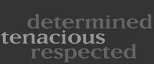 michigan_defense_attorney_qualities