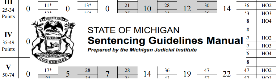 Sentencing Guidelines Are Now Discretionary