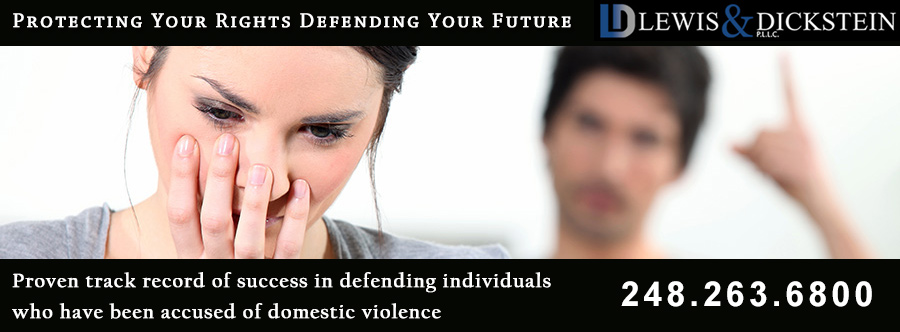Domestic Violence in Michigan